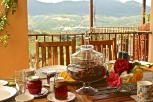 Breakfast at La Finca